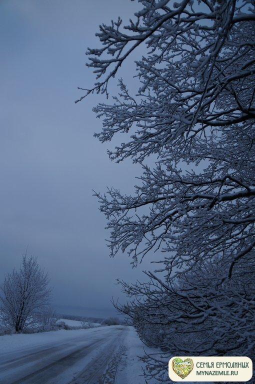 dsc08358 - Зимой в деревне скучно? Это не про нас!